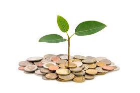 Scholarship Funding Organizations