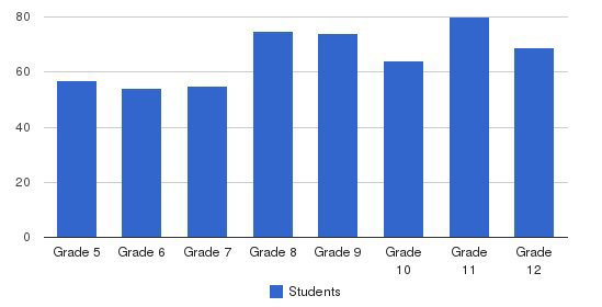 Riverside Academy Students by Grade