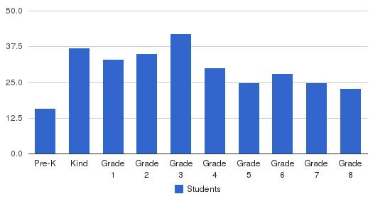 St. Patrick Elementary School Students by Grade