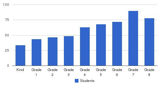 Divine Child Elementary School Students by Grade