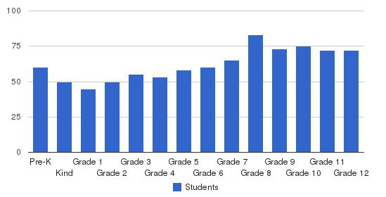 Madison Academy Students by Grade