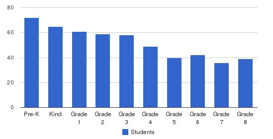 Chinese American International School Students by Grade