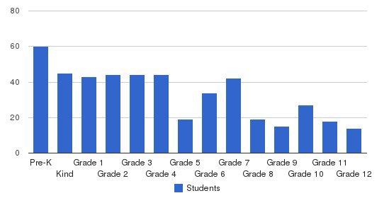 Noor-ul-iman School Students by Grade