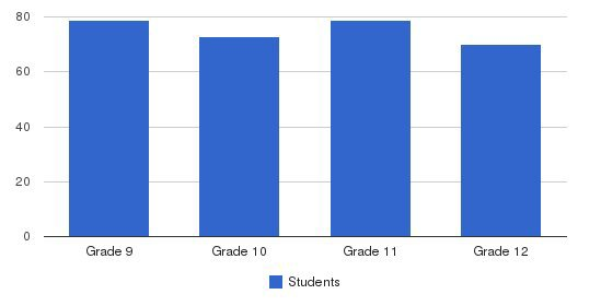 St Mary High School Students by Grade