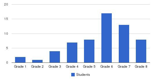 Childrens Home School Students by Grade