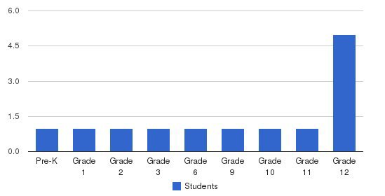 Center For Individualized Training & Education Students by Grade