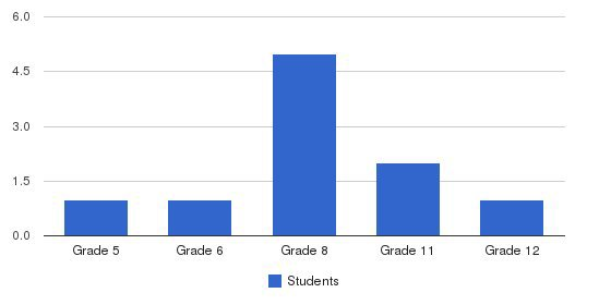 American Academy Students by Grade