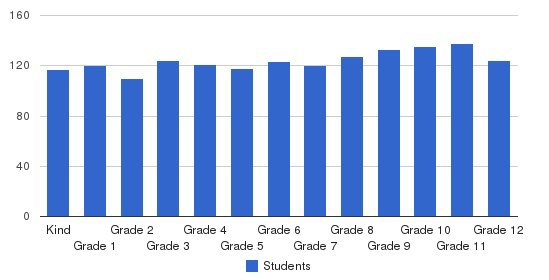Collegiate School Students by Grade