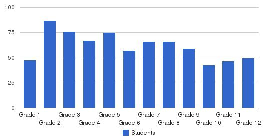 Islamic Saudi Academy Students by Grade