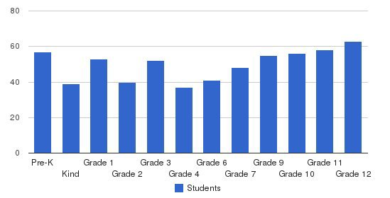 St Marys Springs Academy Students by Grade