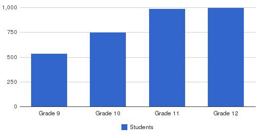 National University Virtual High School Students by Grade