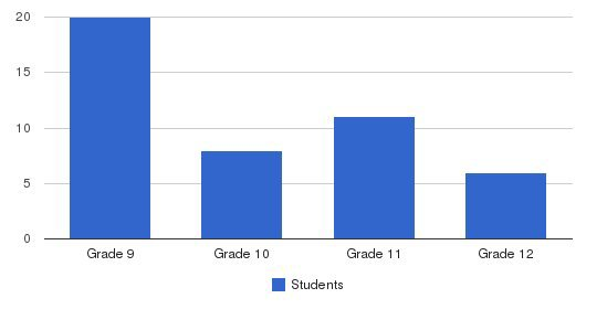 Dc Academy Students by Grade