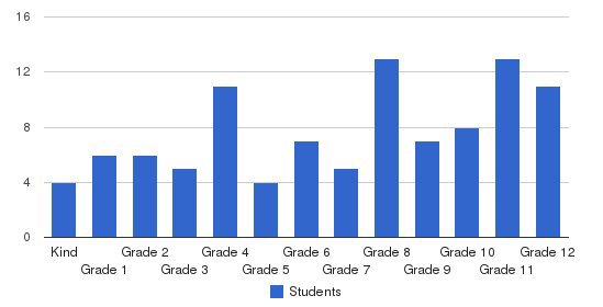Hope Schools International Students by Grade