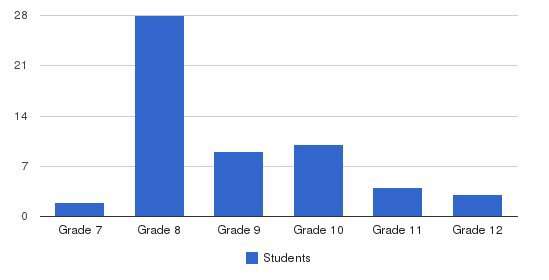 Chamberlain Academy Students by Grade