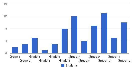 Centennial School Lehigh Univ Students by Grade