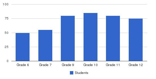 California Technical University High School Students by Grade