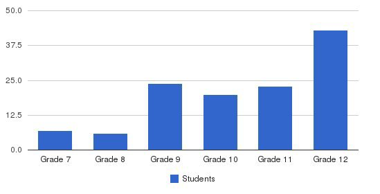 Delaware Valley High School Students by Grade