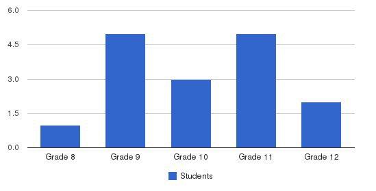 The Phoenix School Students by Grade