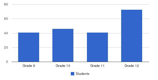 St Elizabeth High School Students by Grade