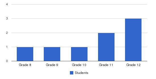 Achievers Academy High School Students by Grade