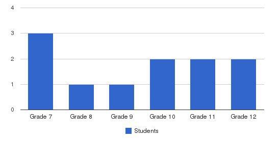 Schiller International School Students by Grade
