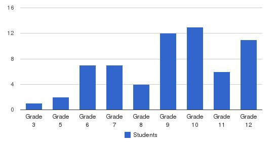 The Learning Clinic Students by Grade