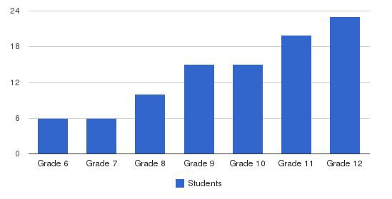 Allison Academy Students by Grade