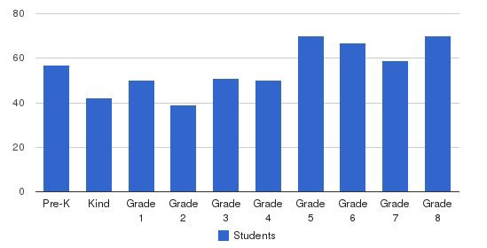 St David Catholic School Students by Grade