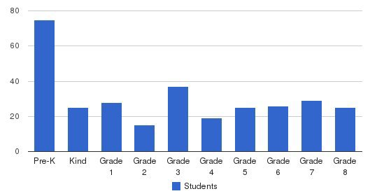 The Masters Academy Students by Grade