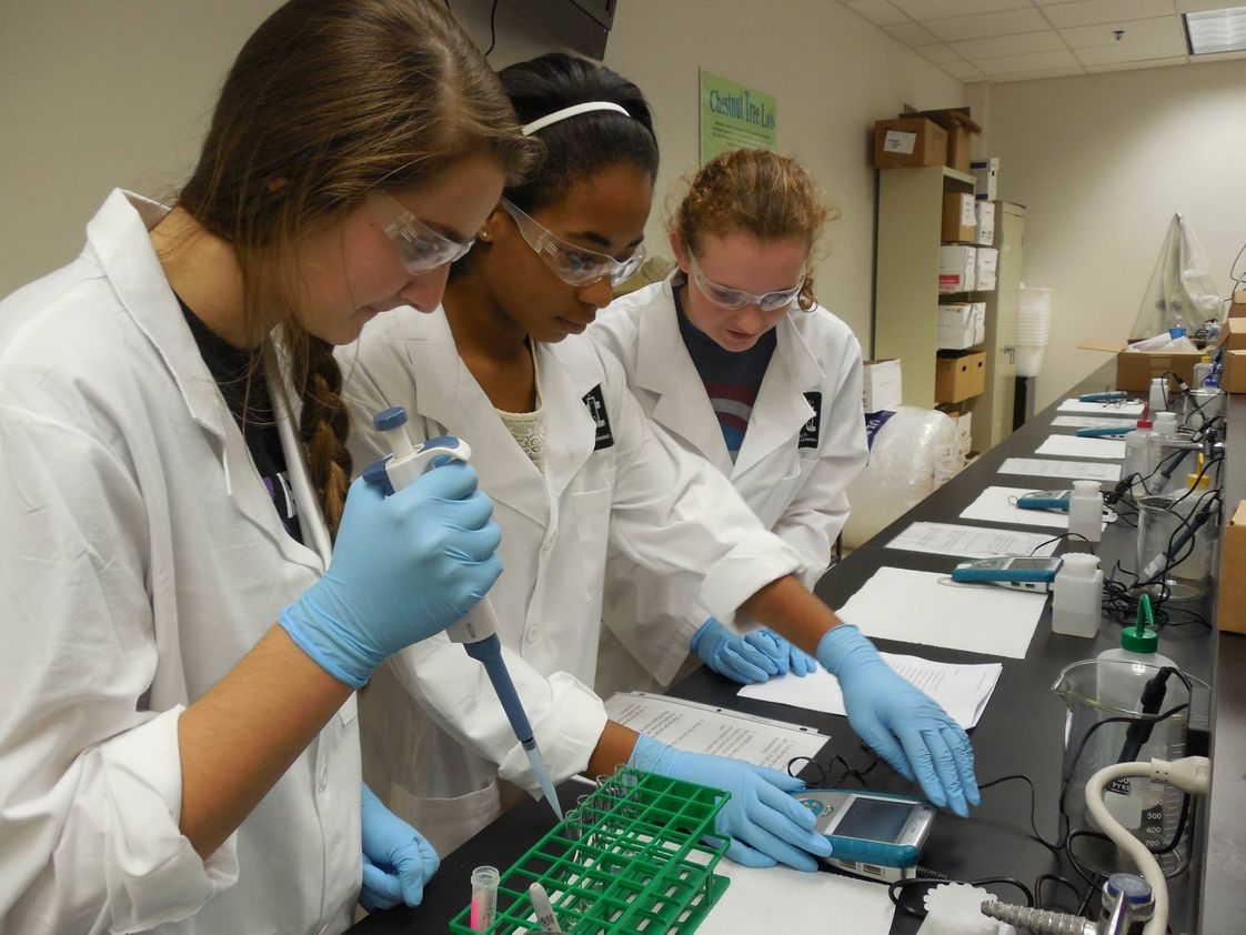 Redeemer Classical Christian School Photo #1 - A science lab at Redeemer