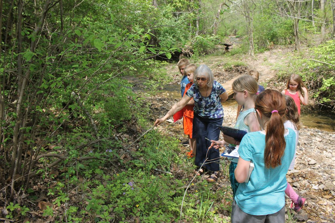 Fulton School at St. Albans Photo - Whenever possible, we take the learning outdoors. Shown here, the lower elementary students are having science class in the creek.