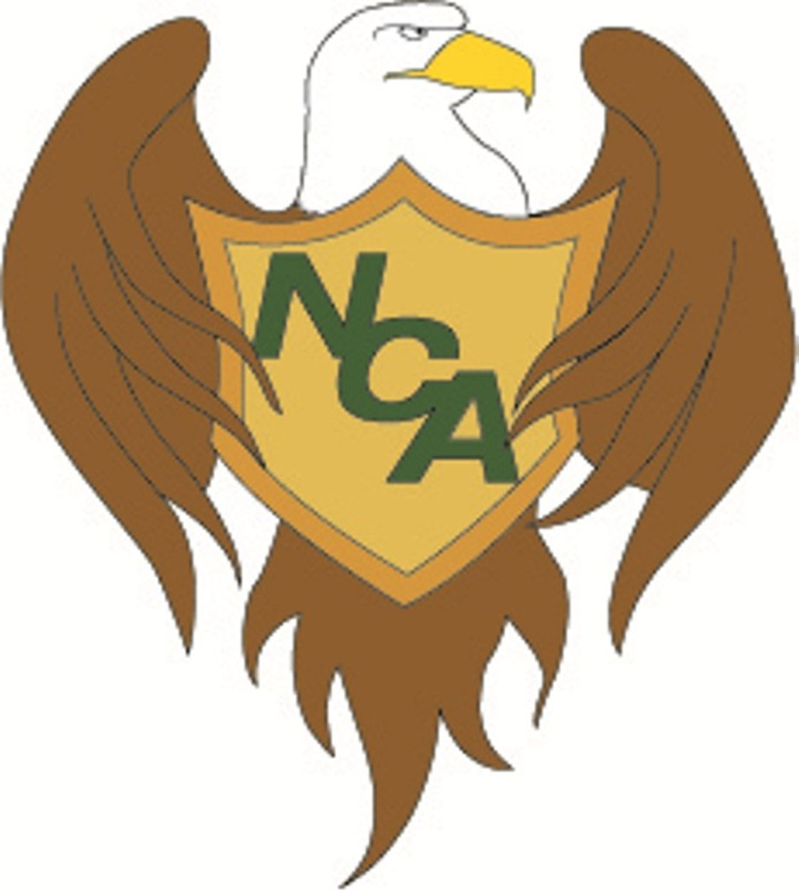 Northside Christian Academy Photo - NCA Eagles Soar!