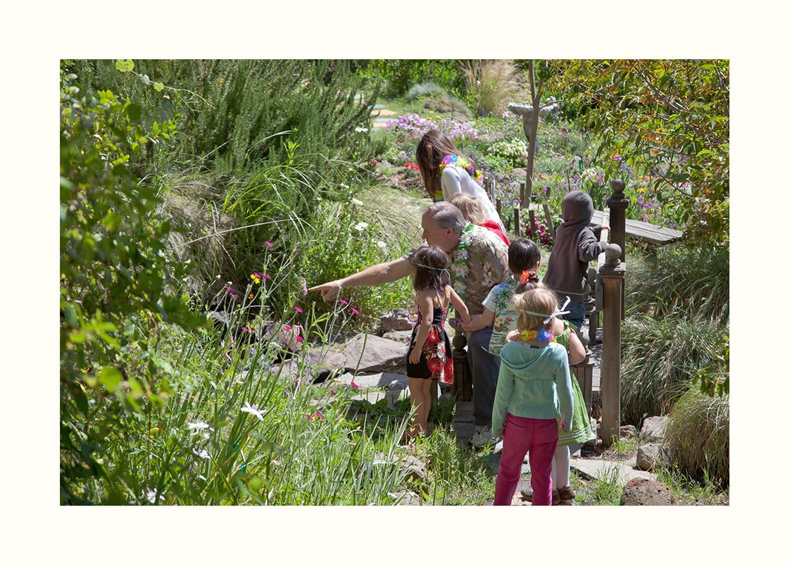 Meher Schools Photo #1 - Students explore the beauty and wildlife in the Children's Garden near the front of the school. Students take frequent nature walks in preschool and kindergarten.