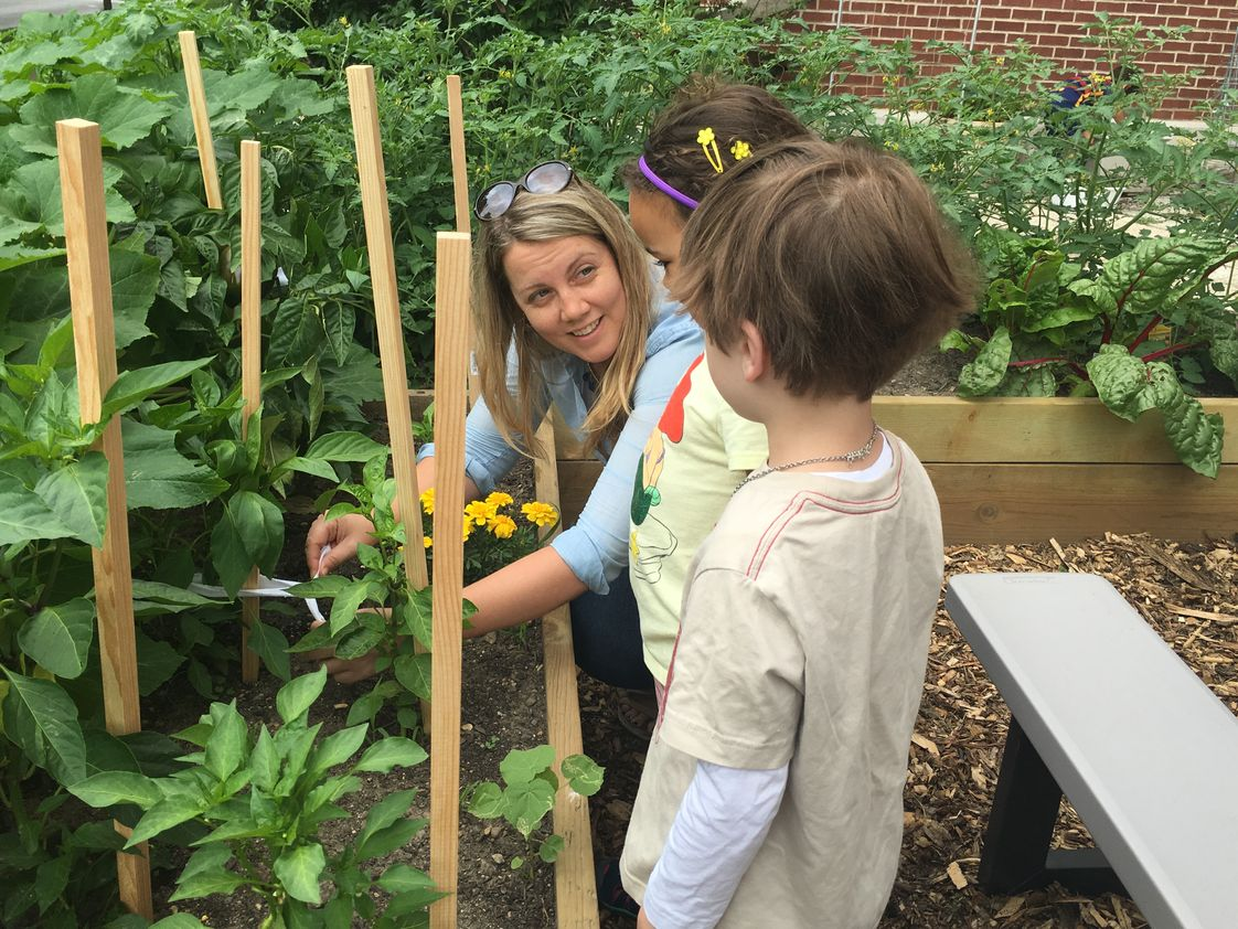 Chiaravalle Montessori Photo #1 - Early Childhood students cultivate herbs and vegetables in the Learning Garden. Chiaravalle was honored to be recognized as a 2017 U.S. Department of Education Green Ribbon School for its commitment to environmental education and energy efficiency.