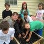Immanuel Christian School Photo - 1st graders working in their garden.