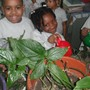 "Little Flower Preparatory School, Inc. Photo #3 - Kindergarteners ""Plants need water""."