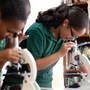 St. Brigid School Photo #6 - St. Brigid School supports hands-on learning in all subjects.