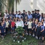 St Mark Catholic School Photo - Our 8th graders planted a tree in our garden to grow with Kindergarten students.