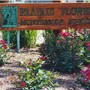 "Prairie Flower Montessori School Photo - Our ""Prairie Flower Montessori School"" sign sits at the entrance to our parking lot. At arrival and dismissal times, parents enter our property down a small road to the west of the lot."