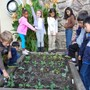 The Principled Academy Photo - 2nd Graders observing the vegetables they planted sprouting in their organic garden, as a part of their science and health/nutrition project.