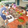 The Foundation Academy Photo #5 - Each grade level has an organic garden to tend to. Outdoor, hands on learning is one way The Foundation Academy teaches core subjects.